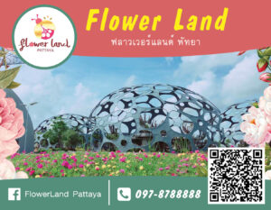FlowerLand-RGB