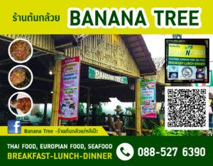 BananaTree-01