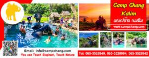 แคมป์ช้าง กะหลิม Camp Chang Kalim