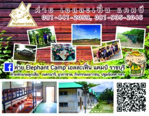 ค่ายเอลละเฟิ่น แคมป์ Elephant Camp