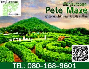 Pete Maze copy